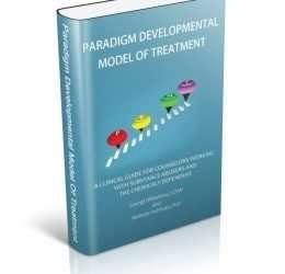 The Paradigm Developmental Model Of Treatment